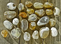 Agate Hunting & Beach Combing